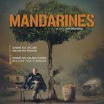 Mandarine(s)