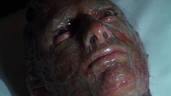 invasion-of-the-body-snatchers-1978-jeff-goldblum-pod-person